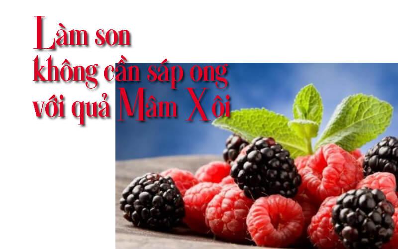 Làm son môi với quả mâm xôi đen và đỏ mang lại đôi môi mềm mại căng mọng